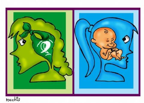 Ni verdes ni celestes: las boletas electorales no podrán tener referencias al aborto