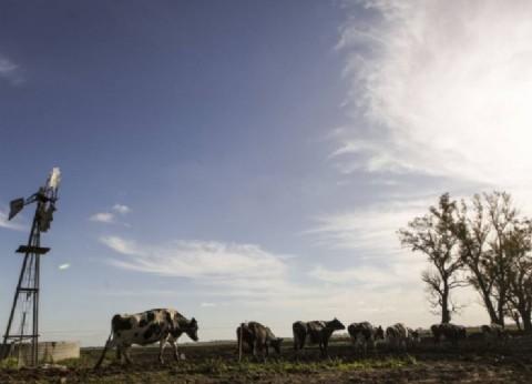 """Con el caballo cansado, la Federación Agraria reconoció: """"Con Cambiemos nos fue peor"""""""