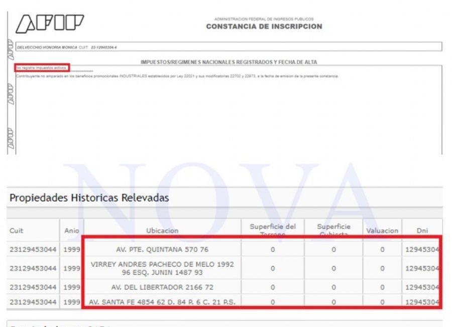 La situación de Honoria ante la AFIP y las propiedades que registra. (Foto: NOVA)
